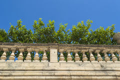 Lemon trees in the episcopal palace in Syracuse, Sicily Royalty Free Stock Photos
