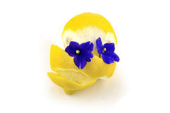 Lemon and two blue flowers Royalty Free Stock Photo