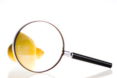 Lemon under magnifying glass Royalty Free Stock Photo