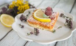 Lemon, vanilla and raspberry bars. Garnished with lemon slices and fresh raspberry Stock Image