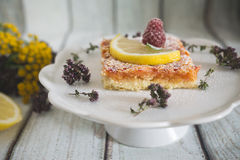Lemon, vanilla and raspberry bars. Garnished with lemon slices and fresh raspberry Stock Photos