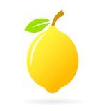 Lemon vector icon Stock Image
