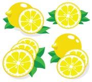 Lemon vector illustration Stock Photography
