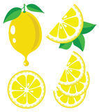 Lemon vector illustration Stock Photo