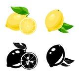 Lemon. Vector Stock Image