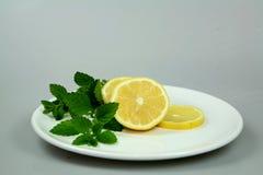 Lemon Verbena. Juicy lemons with a sprig of the herb lemon verbena stock images