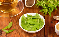 Lemon verbena leaves and tea on table. Stock Photo