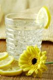 Lemon Water Stock Image
