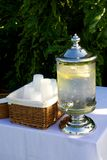 Lemon water Royalty Free Stock Photo