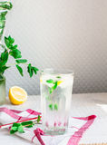 Lemon water with ice and fresh mint, summer drink Stock Image
