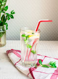 Lemon water with ice and fresh mint, summer drink Royalty Free Stock Photography