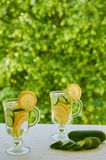 Lemon water in two glasses with ice and cucumber slices on the blurred nature background. Summer cold cocktails. Healthy drinks. Detox and diet concept Royalty Free Stock Images