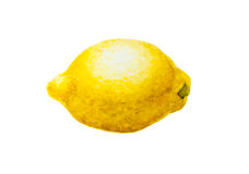 Lemon. Watercolor lemon on white background Royalty Free Stock Photos