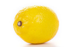 Lemon on white Royalty Free Stock Image