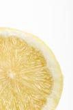 Lemon on a white background. Closeup of a lemon on a white background royalty free stock photo