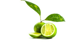 Lemon on white background. For cooking and eat Stock Photo