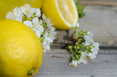 Lemon and white flowers. On wood background Royalty Free Stock Image