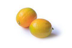 Lemon on white Royalty Free Stock Photography