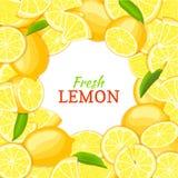Lemon white round frame. Vector card illustration.  Stock Photo