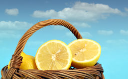 Lemon in wooden basket Stock Image