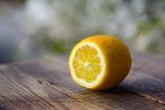 Lemon on wooden table in garden Royalty Free Stock Photos