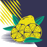 Lemon. Yellow lemon vector draw composition stock illustration