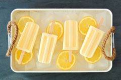 Lemon yogurt popsicles in rustic tray with fresh fruit slices. Homemade lemon yogurt popsicles in a rustic ice filled tray with fresh fruit slices Stock Photos
