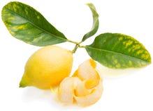 Lemon zest. Whole yellow lemon with leaves  next to zest Royalty Free Stock Image