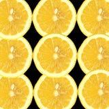 Lemon Zesty Slices. Nine slices of lemon isolated on an black background stock photos