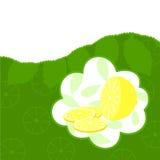 Lemon2 Stock Photo