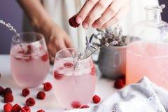 Lemonad för hallon för sommarsötsak med lavander Royaltyfri Bild