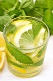 Lemonad med den nya citronen och mintkaramellen royaltyfri foto