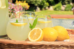 Lemonade. Freshly squeezed lemonade outside in the backyard Royalty Free Stock Images