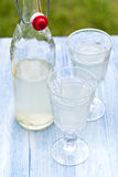 Lemonade. Fresh lemonade in the garden Stock Images