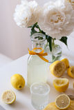 lemonade royaltyfri bild