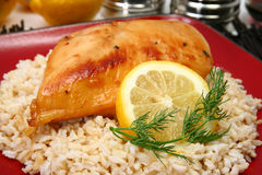 Lemonade Chicken on Brown Rice Royalty Free Stock Photos