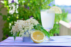 Lemonade  elderberry flower Stock Image