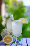 Lemonade  elderberry flower Stock Photography