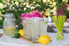 Lemonade. Fresh lemonade. Lemon and lime Royalty Free Stock Image