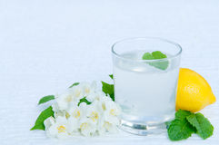 Lemonade with fresh lemon and mint leaves with copy space Stock Photography