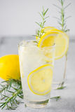 Lemonade with fresh lemon and rosemary Stock Photos