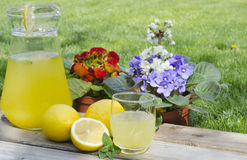 Lemonade in glass cup with mint. And flowers on background Stock Photos
