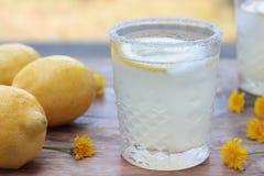 Lemonade. Stock Image