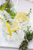 Lemonade with herbs Royalty Free Stock Image
