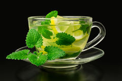 Lemonade with ice and mint in a glass cup Royalty Free Stock Photo
