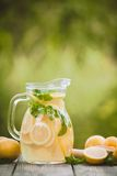 Lemonade in the jug Stock Photos