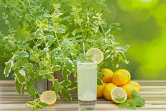 Lemonade and lemon decoration Stock Image
