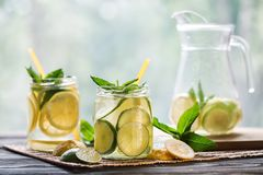 Lemonade with lemon and mint Stock Photography