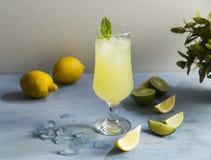 Lemonade. Lemon and Lemonade  on the table Stock Images
