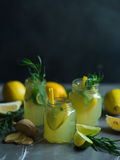 Lemonade with lemons and lime Stock Images